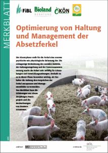 MB_Management_Absetzferkel