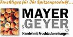 Mayer_Geyer