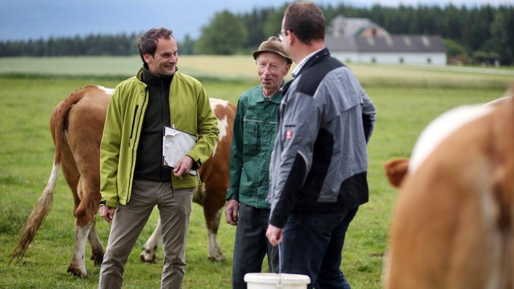 Berater und Biobauern auf der Weide im Gespräch über die Wirtschaftsweise.