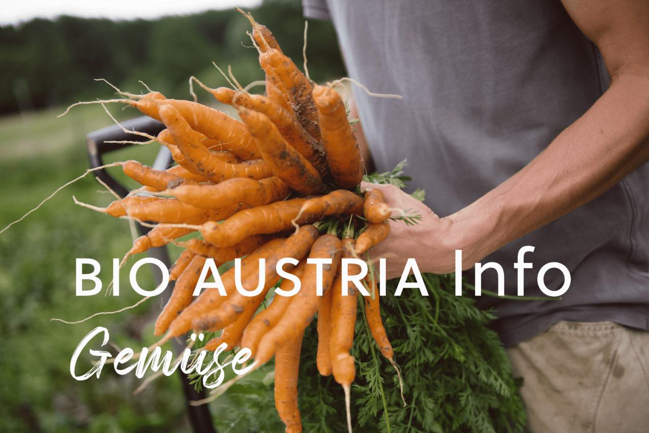 BIO AUSTRIA Info – Gemüse 8/81   BIO AUSTRIA