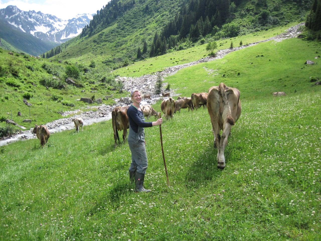 WWOOF_Viehhaltung Vbg