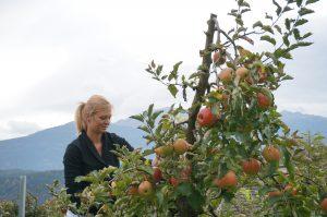 Person beim Kurs: BIO Obstbau
