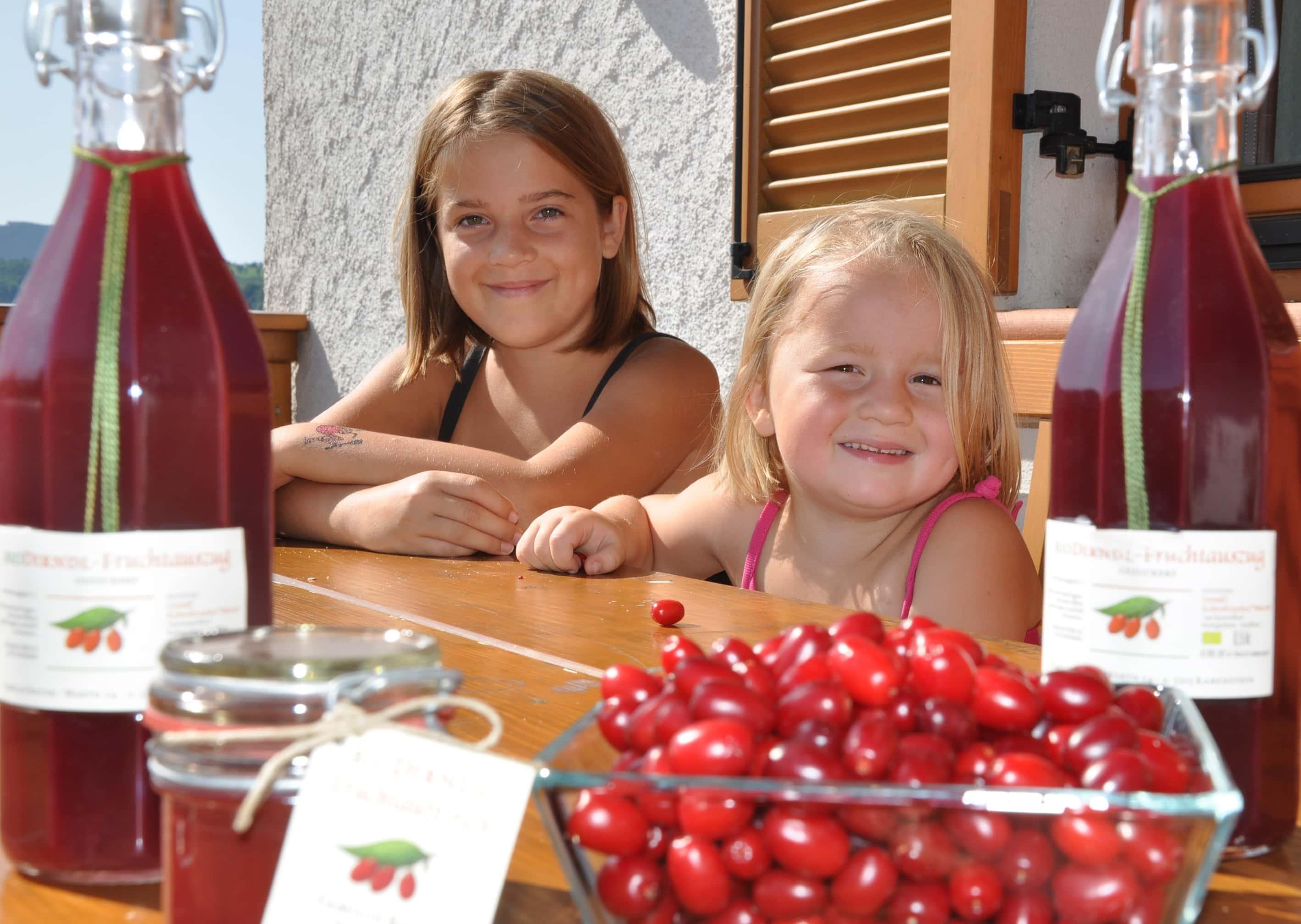 Kinder sitzen am Tisch mit einer Schale Kornellkirschen und Kornellkirschensaftflaschen