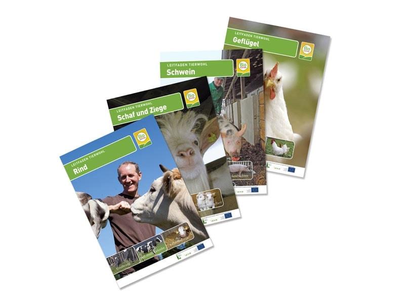 Titelblätter der Tierwohl-Broschüren