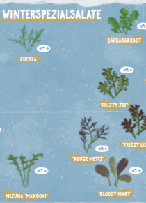 Bild zur Ansicht der Landkarte Wintersalate.