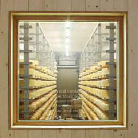 Blick in die Käseproduktion